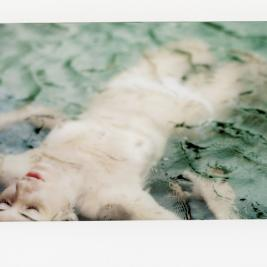 fuji instax wide  copyright Arno Lafontaine.